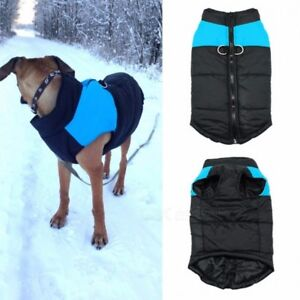 Waterproof Dog Winter Jacket only $30 in Orange and Green Colour