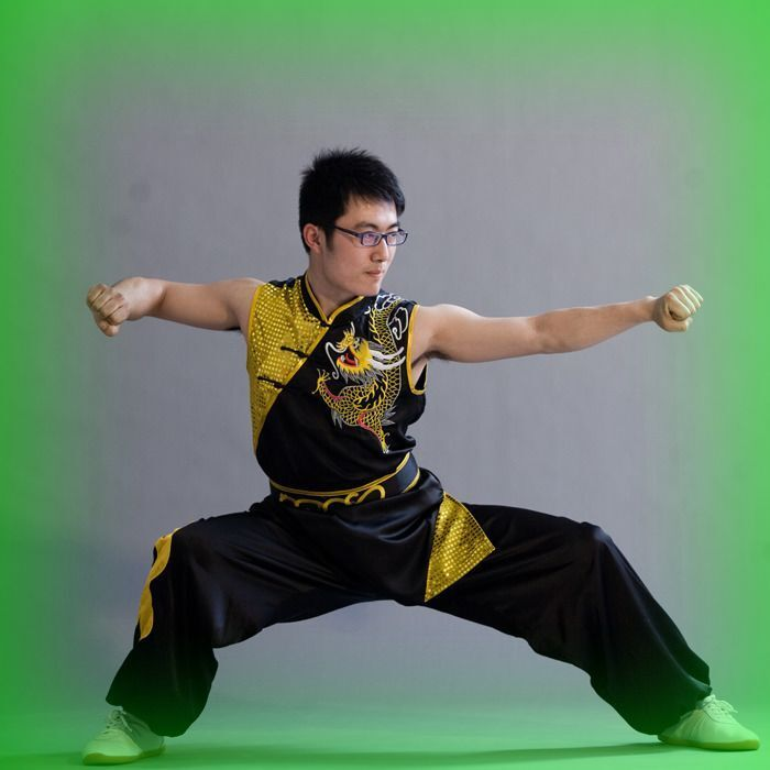 Details about WuShu Sleeveless fashion clothes Chinese Tai Chi clothing  suit Black Dragon