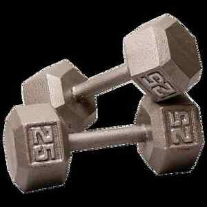 Looking for Dumbells Belleville Belleville Area image 1