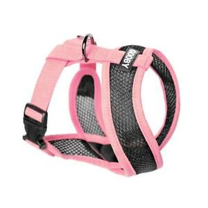 Gooby active x Dog harness