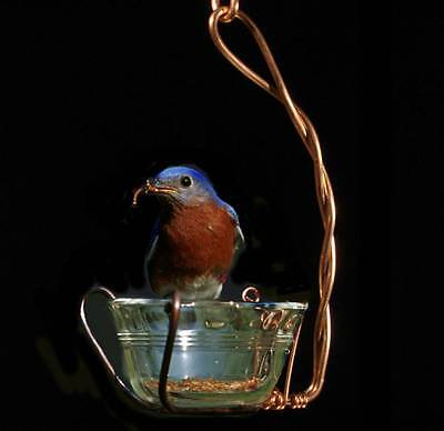 Fruit Oriole Bird Feeder Single 1 cup size Copper & Glass Jam Jelly Mealworm