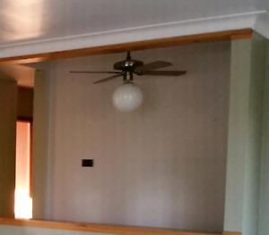 Ceiling Fan/Light fixture