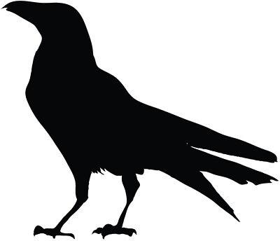 Black Bird silhouette vinyl decal sticker raven crow birds](Birds Silhouette)