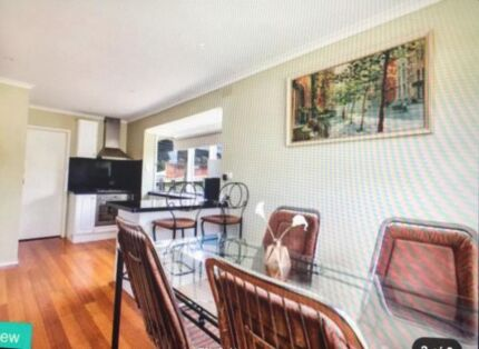 Looking for a professional/student to share a house with.