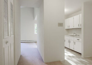 BEAUTIFUL LARGE RENOVATED APARTMENTS, WOOD FLOOR, 1 MONTH FREE