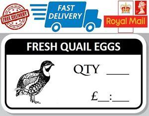 48 x Fresh Quail Egg Box Stickers Qty Price £ Labels For Eggs