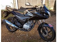 Honda CBF125 Black Rgstd 7/2011. immaculate condition only 4698 miles will come with 1yrs MOT