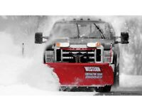 Do You Need Your Driveway Plowed?