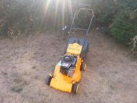 Lawnmower Petrol Push Mower