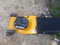 Petrol lawnmower works needs tlc can still use