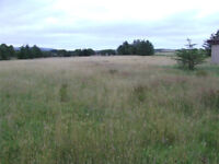 Stables and grazing to rent, Aberdeenshire