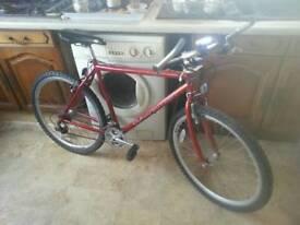 Mens Bike Claud Butler Virago