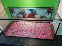 "Large and wide fish tank 36""x17""x17"""