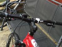 Diamond back Red Peak 24 speed mountain bike 20 inch frame V.G.C