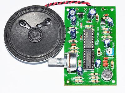 Human to Robot Voice Converter/Changer 9VDC For Education  Assembled Kit [FA930]