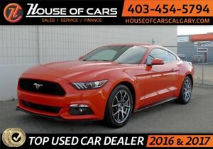 2015 Ford Mustang EcoBoost Premium Coupe APPLY TODAY DRIVE TODAY