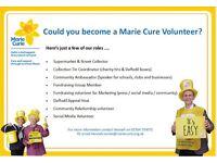 Volunteer Roles Swansea