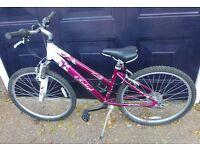 Raleigh Venture Girls Bicycle
