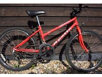 Teenager/Large Child Bike - Apollo Corona - fully serviced (Hybrid/MTB like Raleigh/Giant/road)