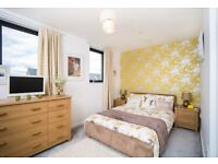 Double Bed & two bedside Cabinets