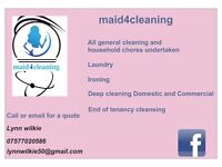 Domestic cleaner and house keeping