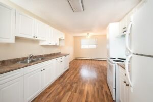 Pioneer Apts - 2 bedrooms bi-level Apartment for Rent