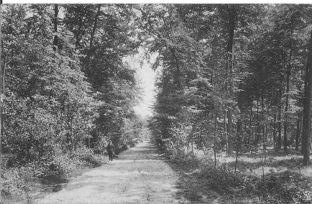 BUGGENHOUT  réf 1834