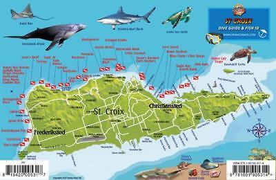 St. Croix USVI Dive Map Fish ID Virgin Islands Waterproof Fish Card Franko Maps