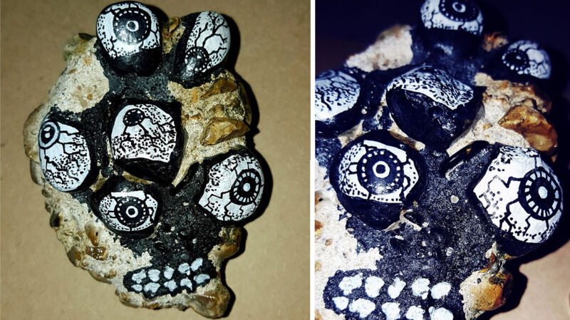 A Stone with Eyes