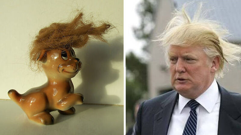 """""""Dogald Trump"""""""