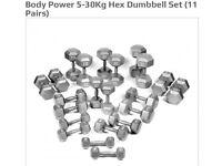 Hex Dumbbells 5kg-30kg full set with Rack