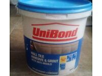 Wall tile adhesive and grout with anti mould