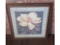 White Flower Picture in Gold Frame