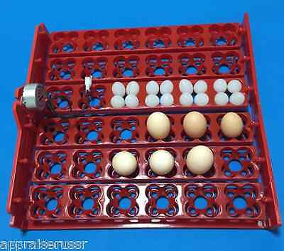 Automatic 144 - 36 Quail Egg Turner Tray With Motor 110volt Or 220volt