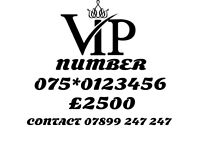 VIP GOLD MOBILE NUMBER 0123456
