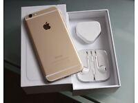 iPhone 6 gold unlocked 16gb