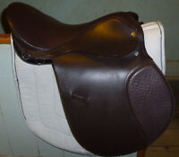 17 IN ENGLISH SADDLE in great shape