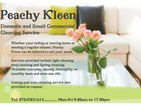 Domestic & Commercial Cleaning Services