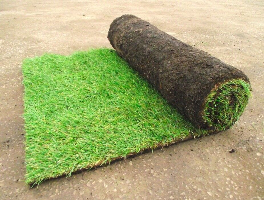 Sportsman Quality Garden Lawn Turf Only £2.99 Per Roll Available 7 Days A Week Collection / Delivery