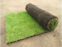 Garden Lawn Turf 1 Square Metre Rolls Fresh Every Day Only £2.56 Each