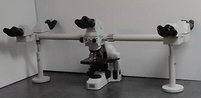 Nikon Microscope Eclipse E400 Multihead With 2x Objective Teaching System