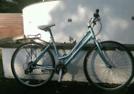 Mountain Adult bike