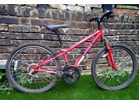 Urgent. Apollo xc.24 bike
