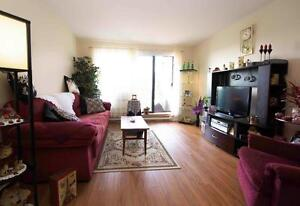 Spacious 3 bedroom apartment for rent!