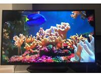 "50"" 4K UltraHD LEDTV with box"