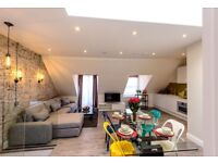 Zone 2, Short let, 4 stops to Baker Street by tube, most beautiful 2 Bed PENTHOUSE with roof terrace