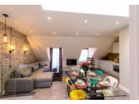Most beautiful 2 bed top floor flat with roof terrace, Short or Long Let - 10'Baker Street