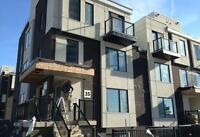 NEW 3 bedroom + 2 baths & In-suite Laundry! (North York)