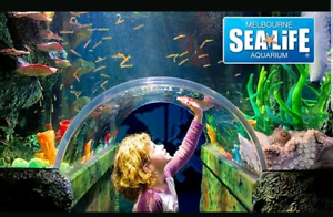 melbourne sealife aquarium 2 for 1 voucher Melbourne CBD Melbourne City Preview