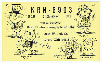 Old Cat Kitten Postcard QSL Card Amateur CB Ham Radio Cleveland Ohio Advertising